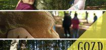 2. NARAVOSLOVNI DAN: Gozd (7.a)